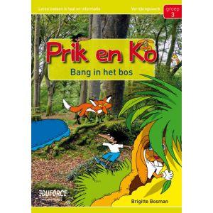 Prik en Ko groep 3, pluswerk (5 ex.)